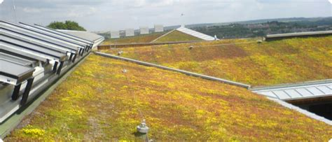 Home Design Challenge by Extensive Green Roof Irrigation Sedum Roof Irrigation