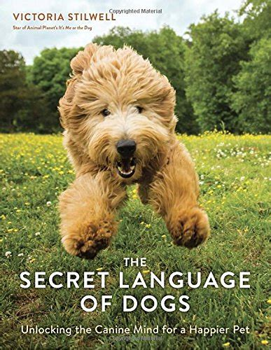 secret of dogs the secret language of dogs savurbks
