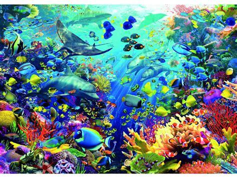 imagenes de la vida bajo el mar fond d 201 cran marin magnifique