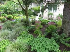 Backyard Drainage Problem Northwestern Shade Garden Landscaping Network