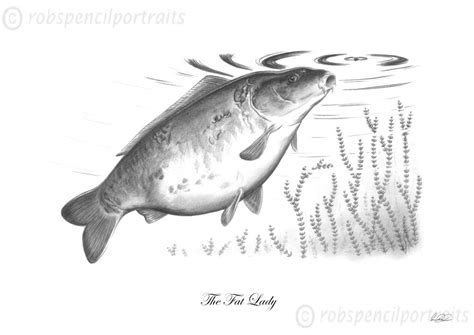 the fat lady classic famous carp pencil drawing art print