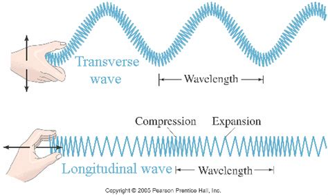 what are longitudinal and transverse wave and is sound a