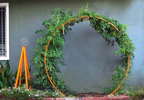 geometric goddess jen asher of terra trellis joins us today garden eats