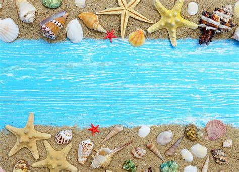 imagenes vintage mar arena conchas y estrellas de mar sobre un fondo azul de