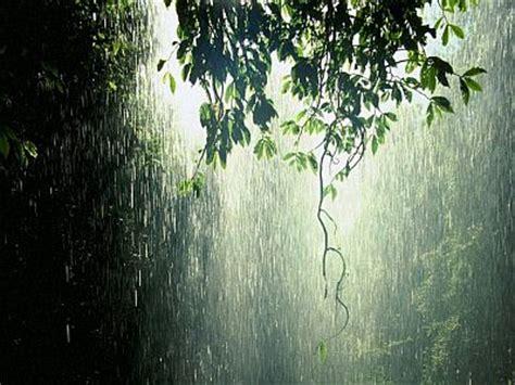 imagenes de fuertes lluvias banco de imagenes y fotos gratis paisajes con lluvia parte 1