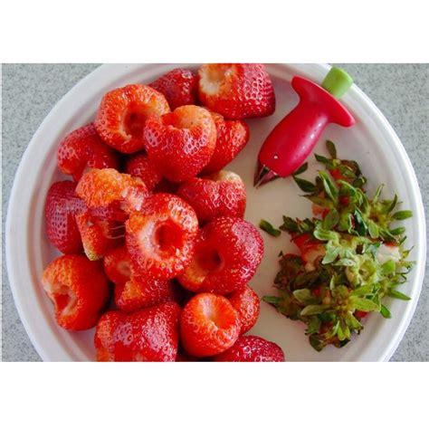 strawberry tomato digging tools alat buat lubang tomat strawberry jakartanotebook