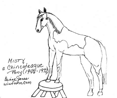 Chincoteague Pony Coloring Page | the windt im wald farm coloring book