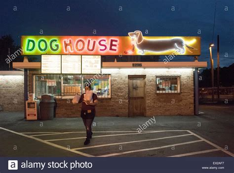 dog house albuquerque the dog house neon sign on central avenue route 66 in albuquerque stock photo