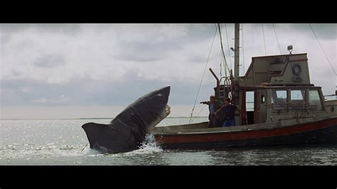 jaws jumps on boat jaws boat blank template imgflip