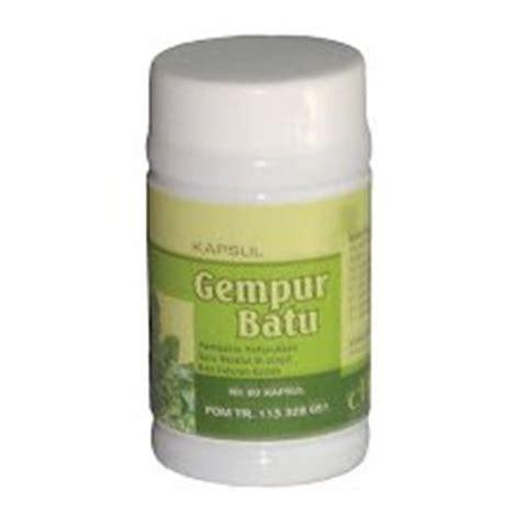 Obat Herbal Menghancurkan Batu Ginjal daun keji beling menghancurkan batu ginjal tanaman obat the knownledge