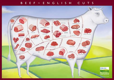 beef diagram what is the difference between and cuts of