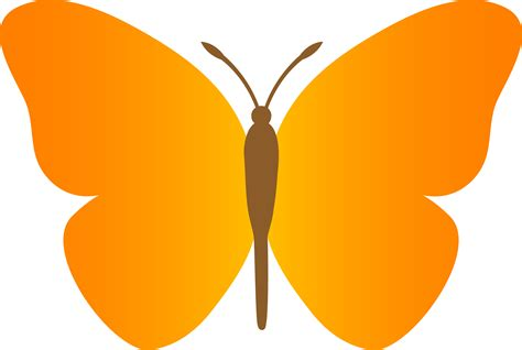 Orange Color Cartoon Pictures Of Butterflies Free Download Clip Art