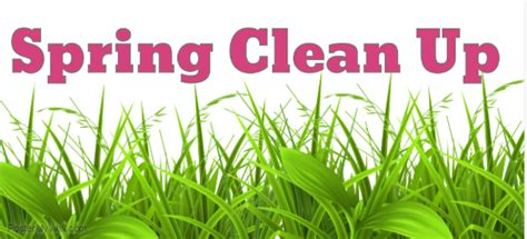 spring clean spring clean landscaping