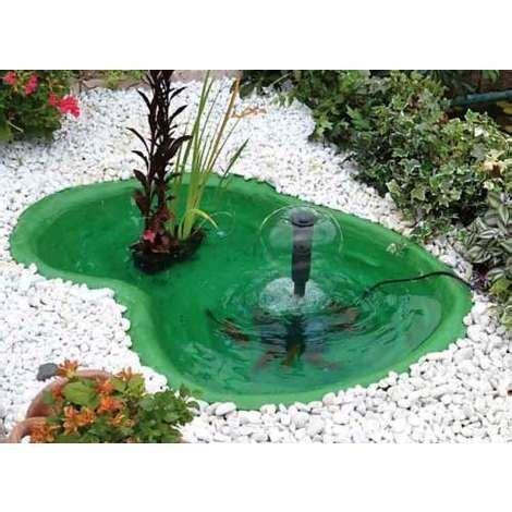 laghetti da giardino per tartarughe laghetto verde da giardino per tartarughe piante e pesci