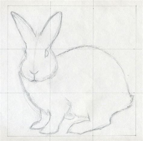 easy sketches how to draw a rabbit