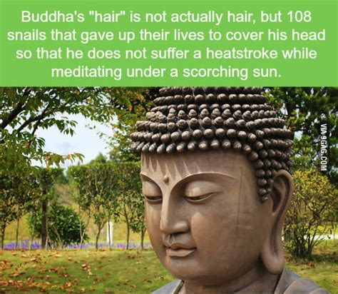 bhuddists and hair iconography why this hair style on statues of the buddha