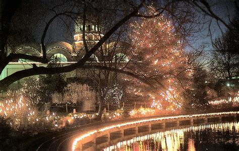 cincinnati zoo festival of lights published december 2 2013 at 813 215 515 in in