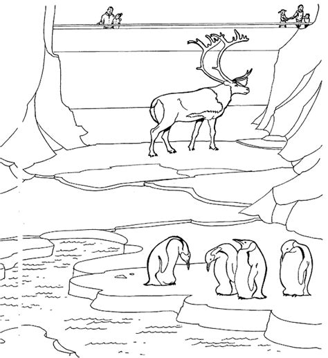 free coloring pages of a visit to zoo