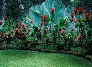 20 gardens tropical plants design ideas eva furniture