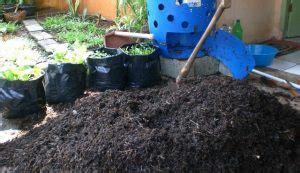 Pupuk Kompos Dan Pupuk Organik pupuk organik pengertian cara membuat jenis manfaat
