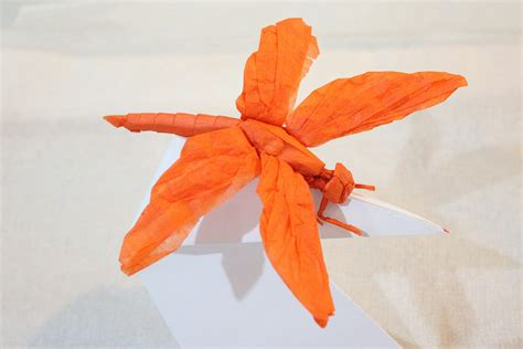 Dragonfly Origami - 24 incredibly realistic looking origami insects