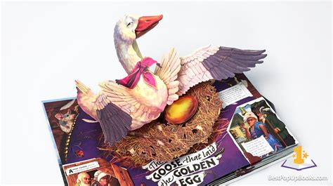 pictures of pop up books pop up book gallery best pop up books