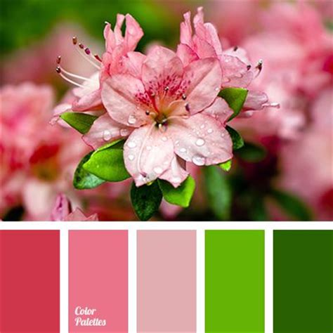 colors that match light green bright scarlet brown burgundy chocolate color match