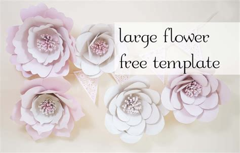 large paper flower templates paper flowers free template
