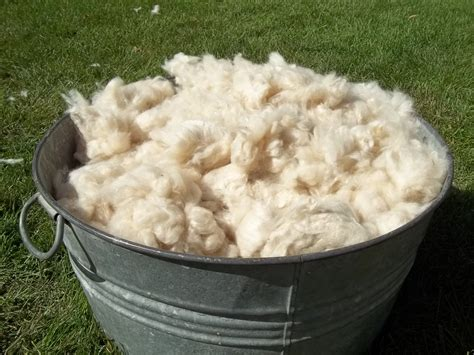 Cotton Upholstery Kapok Fiber Per Lb