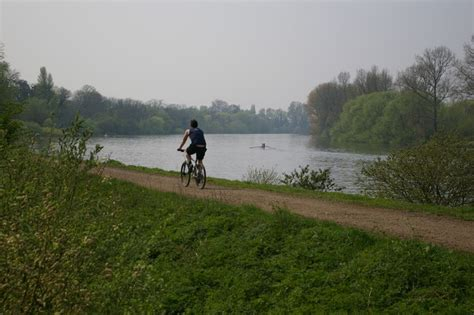 thames river kew westminster river thames at kew gardens 169 dave butlin cc by sa 2 0