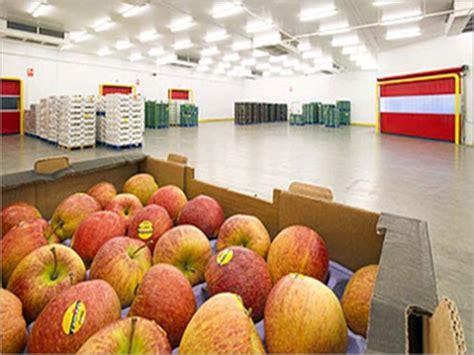 cold storage new year oranges cold storage room cold storage room exporter