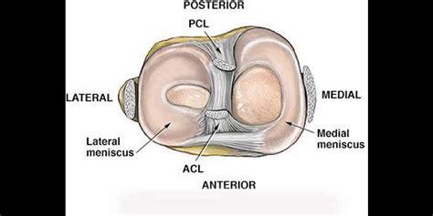 menisco interno lesiones de los meniscos unitrauma