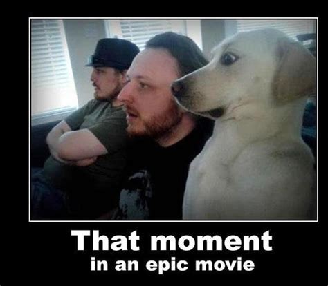 epic film moments that moment when quotes for dogs quotesgram