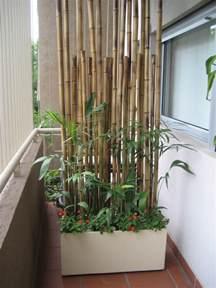 sichtschutz terrasse pflanzen balkon sichtschutz mit pflanzen natur pur auf dem balkon