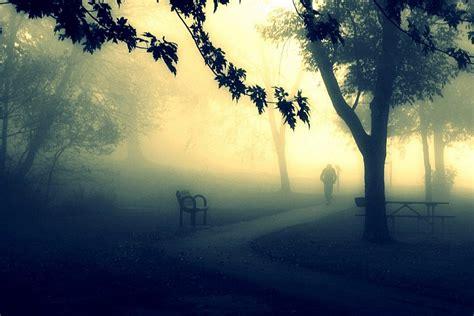 imagenes hermosas las mejores 16 hermosas fotos en la niebla para inspirarte