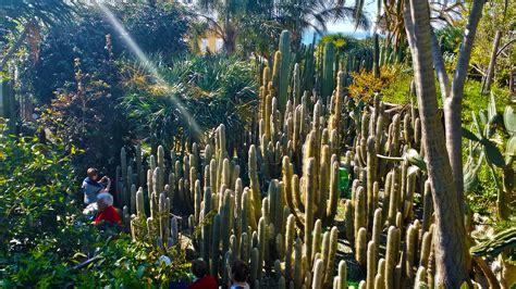 giardini a ischia ischia giardino botanico ravino pagina ufficiale cactus