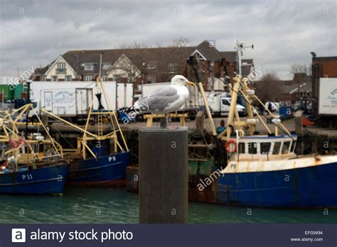 boat fishing portsmouth harbour fishing boats moored in portsmouth harbour camber dock by