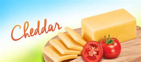 Keju Cheddar Olahan Calf Cheese prochiz cheddar keju cheddar olahan prochiz 2kg