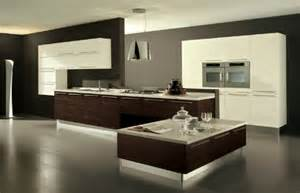 large luxury kitchen great dark brown color