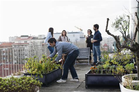 imagenes de jardines urbanos 12 beneficios de cultivar huertos urbanos