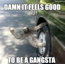 Perverted Sloth Meme - thug sloth meme collection