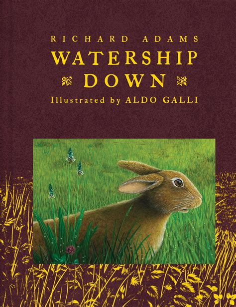 watership picture book watership book by richard aldo galli
