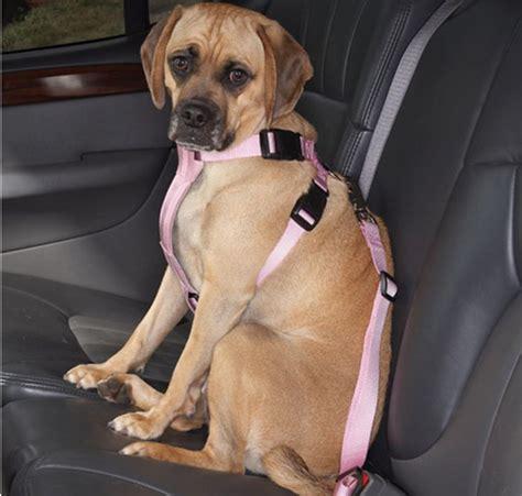 canine car seat belts harness car safety seat belt belts