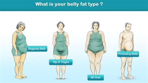 there are four types of belly what is your type and how to get rid of it