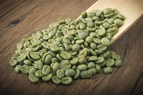 Green Coffee Bean about our fort lauderdale coffee roastary and coffee shop