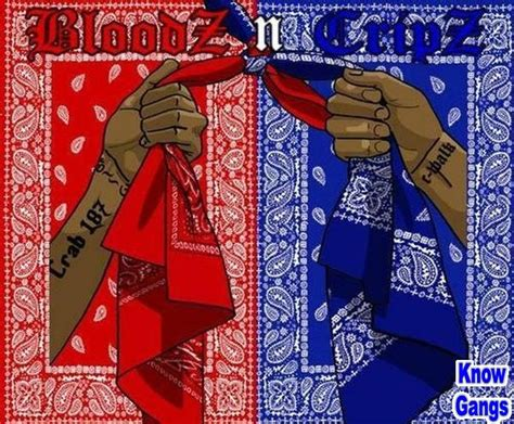 the bloods and crips and saggin rise of the indigo