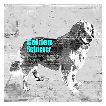 golden retriever coat stages golden retriever glass coat glass coat by type z gallerie