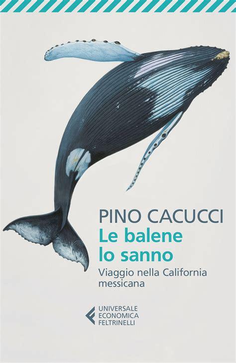 Cacucci Libreria - pino cacucci le balene lo sanno libro feltrinelli