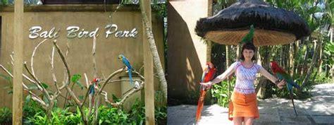 Tiket Bali Bird Park Dewasa bali bird park peta lokasi harga tiket masuk taman burung 2018