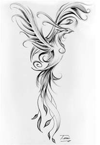 phoenix black and white drawing by terri meredith